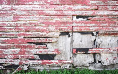 What Really Is the Cost of Reclaimed Wood?