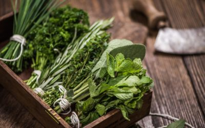 Building Herb Gardens With Reclaimed Wood